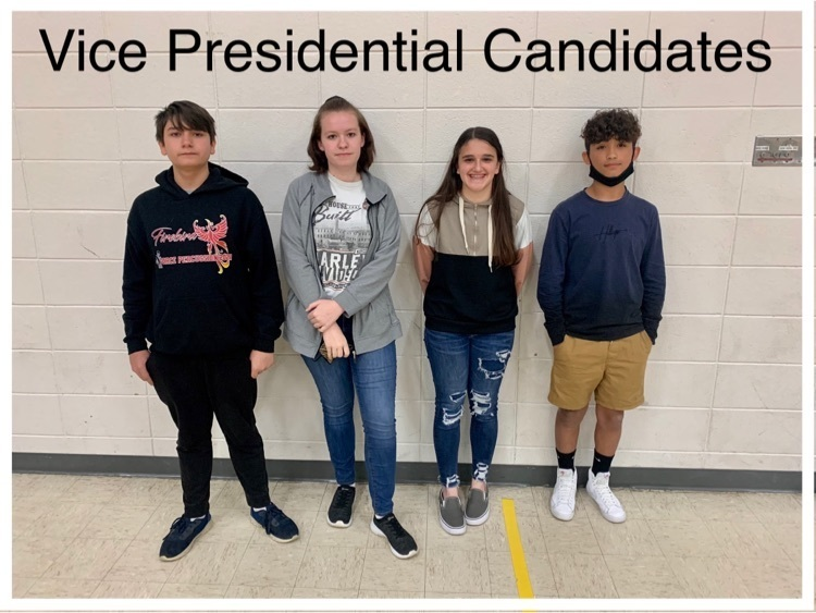 Vice Presidential candidates